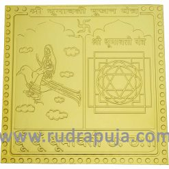 Dhumavati Pujan Yantra