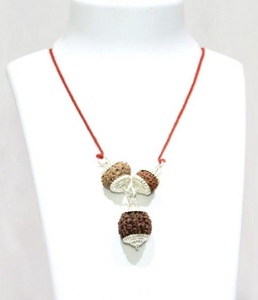 Rudraksha Combination for Wealth and Success